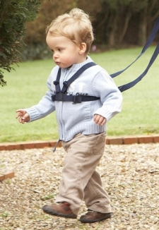 Clippasafe Walking Harness & Rein